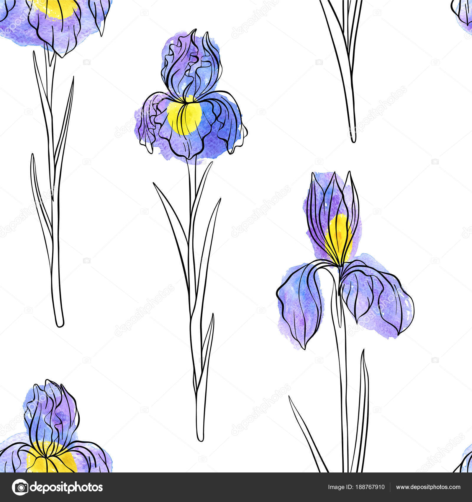 Vector seamless pattern with flowers of iris stock vector vector seamless pattern with flowers of iris stock vector izmirmasajfo