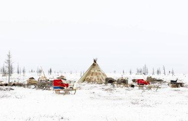 Camp of nomadic tribe in the polar tundra