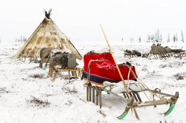 Camp of nomadic tribe in the polar tundra