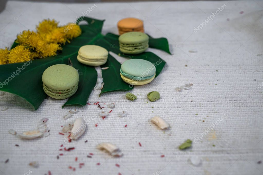 Green and yellow macaroons with the leaf of a monstera and wreath of dandelions