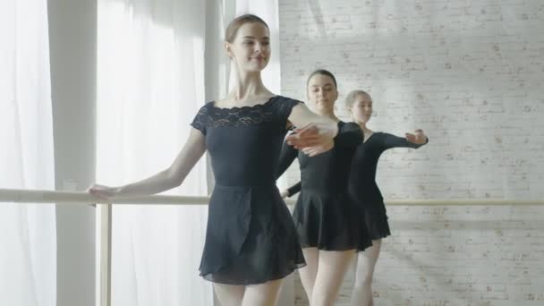 Ballerinas Practicing  Dance at the Barre.