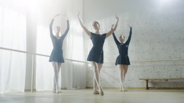 Graceful Ballerinas Practicing  Dance.