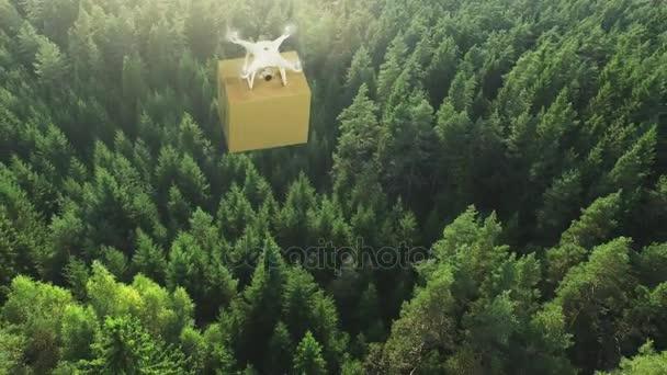 Letecký snímek dron nad letní Forest dodání balíčku.