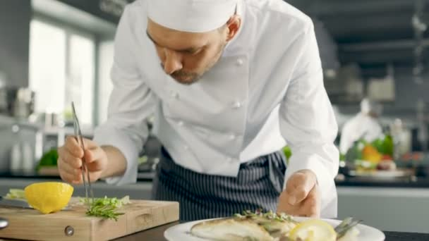 Slavný šéfkuchař zdobí jeho speciální rybí pokrm s nějakou zelení. Pracuje v moderní kuchyni..