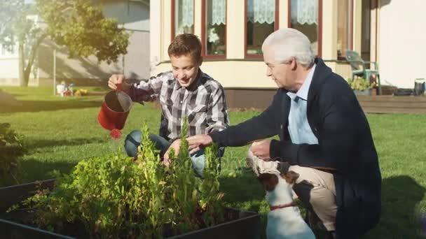 Nonno e nipote innaffiando le piante