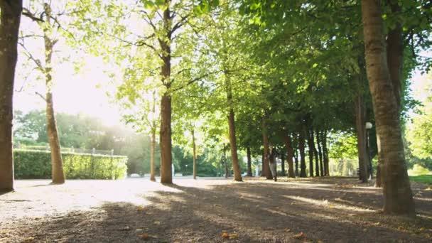 junge Frau läuft bei strahlendem Sonnenschein vorwärts