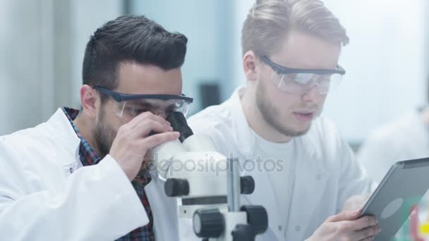 Team of Multiethnic Scientists Does Research. Scientist using Microscope.