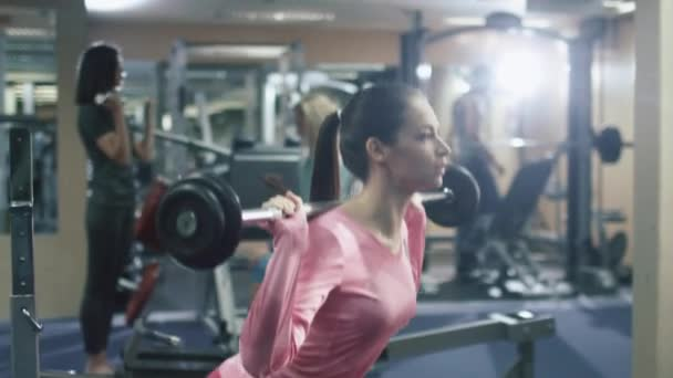Attractive fit sporty girl is exercising squats with barbell in the gym.