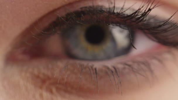 Fokussierende Nahaufnahme Der Blauen Auge Einer Frau Von Vorne Mit