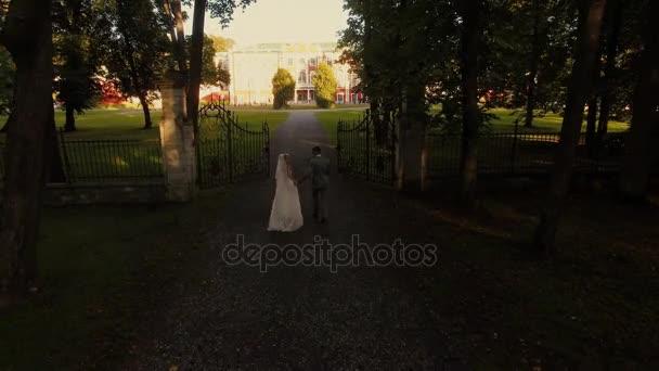 Colpo di drone aerea di una sposa e sposo verso la Villa in un parco