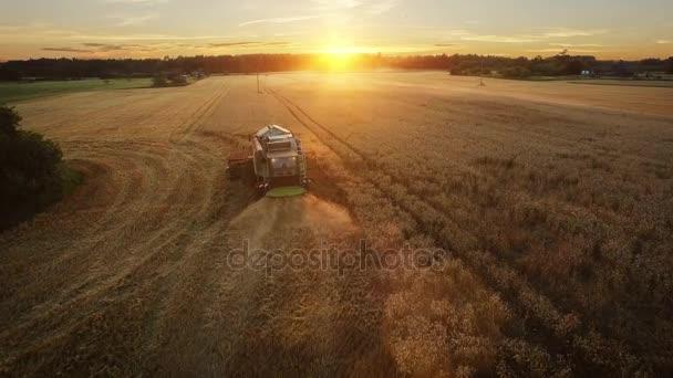 Letecký snímek kombajnu, který pracuje na poli při západu slunce.