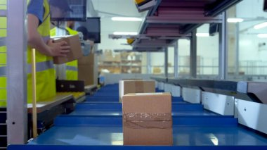 Worker Puts Parcel From Moving Belt Conveyor at Post Sorting Off