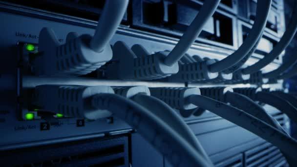 Makroaufnahme aus nächster Nähe: Ethernet-Kabel, die mit blinkenden Lichtern an Router-Ports angeschlossen werden. Telekommunikation: Informationskommunikationsnetzwerk mit Internet-Anschlüssen an Modem-LAN-Switches