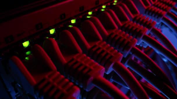 Makroaufnahme: Ethernet-Datenkabel, die mit blinkenden Lichtern an Router-Ports angeschlossen werden. Informationstechnologie mit RJ45-Internetanschlüssen, die in Modem LAN Switches gesteckt werden. Neonrotes blaues Licht