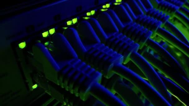 Makroaufnahme: Ethernet-Datenkabel, die mit blinkenden Lichtern an Router-Ports angeschlossen werden. Telekommunikation: RJ45-Internetanschlüsse, die in Modem LAN Switches gesteckt werden. Bewegte Kamera. Blaugrüne Beleuchtung
