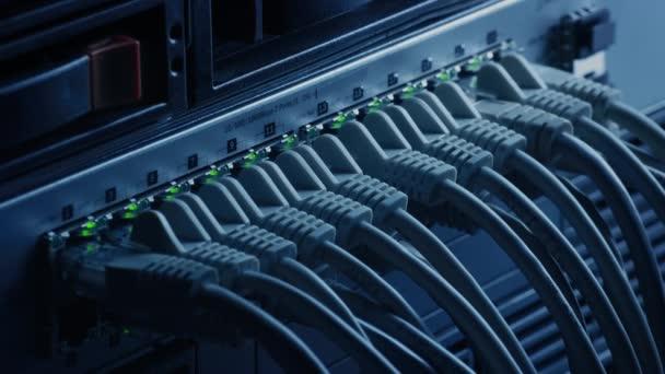 Makroaufnahme: Ethernet-Datenzentrumskabel, die mit blinkenden Lichtern mit Router-Ports verbunden sind. Telekommunikation: RJ45-Internetanschlüsse, die in Modem LAN Switches gesteckt werden. Cyber-Sicherheitsdatenbank funktioniert