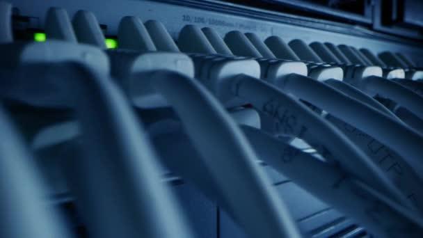 Makroaufnahme: Ethernet-Datenkabel, die mit blinkenden Lichtern an Router-Ports angeschlossen werden. Telekommunikation: RJ45-Internetanschlüsse, die in Modem LAN Switches gesteckt werden. Kamera bewegt sich zwischen Kabeln