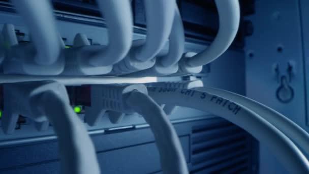 Makroaufnahme aus nächster Nähe: Ethernet-Kabel, die mit blinkenden Lichtern mit Router-Ports verbunden sind. Telekommunikations-RJ45-Gerätesteckverbinder, die in Modem-Hubs gesteckt werden. Sichere Rechenzentren. Kamera bewegt sich zwischen Kabeln