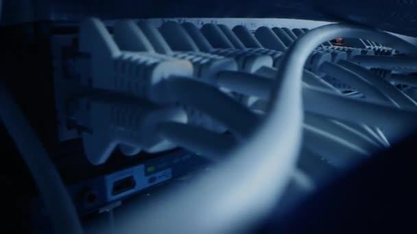 Nahaufnahme Makro-Shot-Ethernet-Kabel, die mit blinkenden Lichtern mit Router-Ports verbunden sind. Telekommunikation: RJ45-Gerätesteckverbinder, die in Modem-Hubs gesteckt werden. Sichere Rechenzentren. Kamera bewegt sich zwischen Kabeln