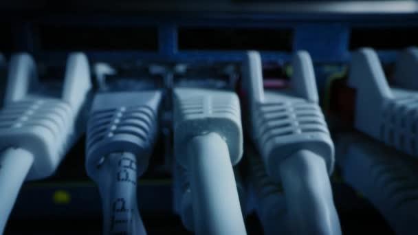 Makroaufnahme aus nächster Nähe: Ethernet-Kabel, die mit Router-Ports verbunden sind. Telekommunikation: RJ45-Gerätesteckverbinder, die in Modem-Hubs gesteckt werden. Immersive POV Ego-Zoom-Kamera, die sich zwischen Kabeln bewegt