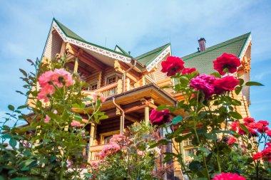 Summer garden and wooden house
