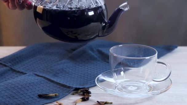 Kék pillangó borsó tea forró Clitoria virágok közelkép. Öntsön egy pohárba egy üveg teáskannából. Egzotikus virágos kék tea, amely elősegíti a fogyást. Wellness és méregtelenítő.
