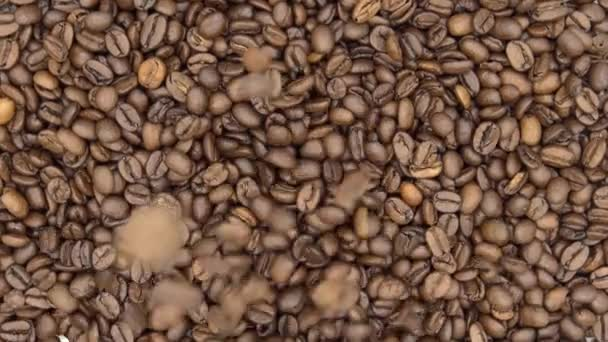 4k Top Of View Of Texture Of Roasted Coffee Beans Falling and Rotate-Dan