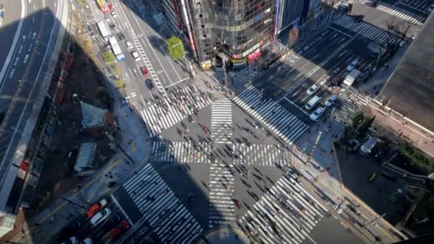 Tokyo, Japan-02 February, 2020: 4K, Elevated view over a crowd pedestrian crossing in road intersection with light of a sunset. Asia downtown at day. Metropolitan City-Dan