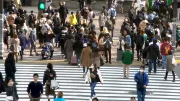 Tokyo, Japan-04 February, 2020: 4K, Aerial view of crowd pedestrian crossing in Shibuya intersection. Asian people in busy scramble crosswalk. Asia downtown at day. Above Metropolitan City-Dan