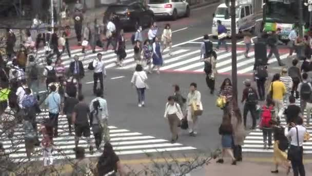 Tokyo, Japan-29 September, 2017: View over a crowd of pedestrian crossing in Shibuya Tokyo. Asian people locals and tourists walking in busiest road intersection street. Tourist attraction-Dan