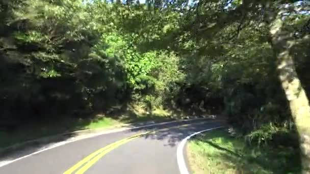 4K Driving On Mountain Road Through Forest With Turns in Asia. Jízda na prázdné silnici za jasného letního dne v národním parku Yangmingshan Mountains, Taiwan-Dan
