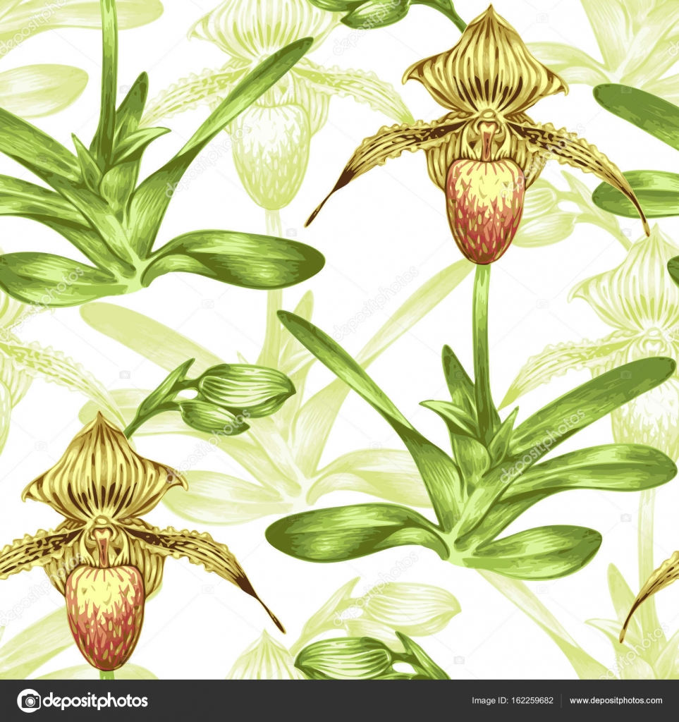 Seamless Vector Background. Pattern With Exotic Tropical Flowers. Orchid.  Design For Wallpaper, Upholstery Fabrics, Textiles, Paper, Packaging.