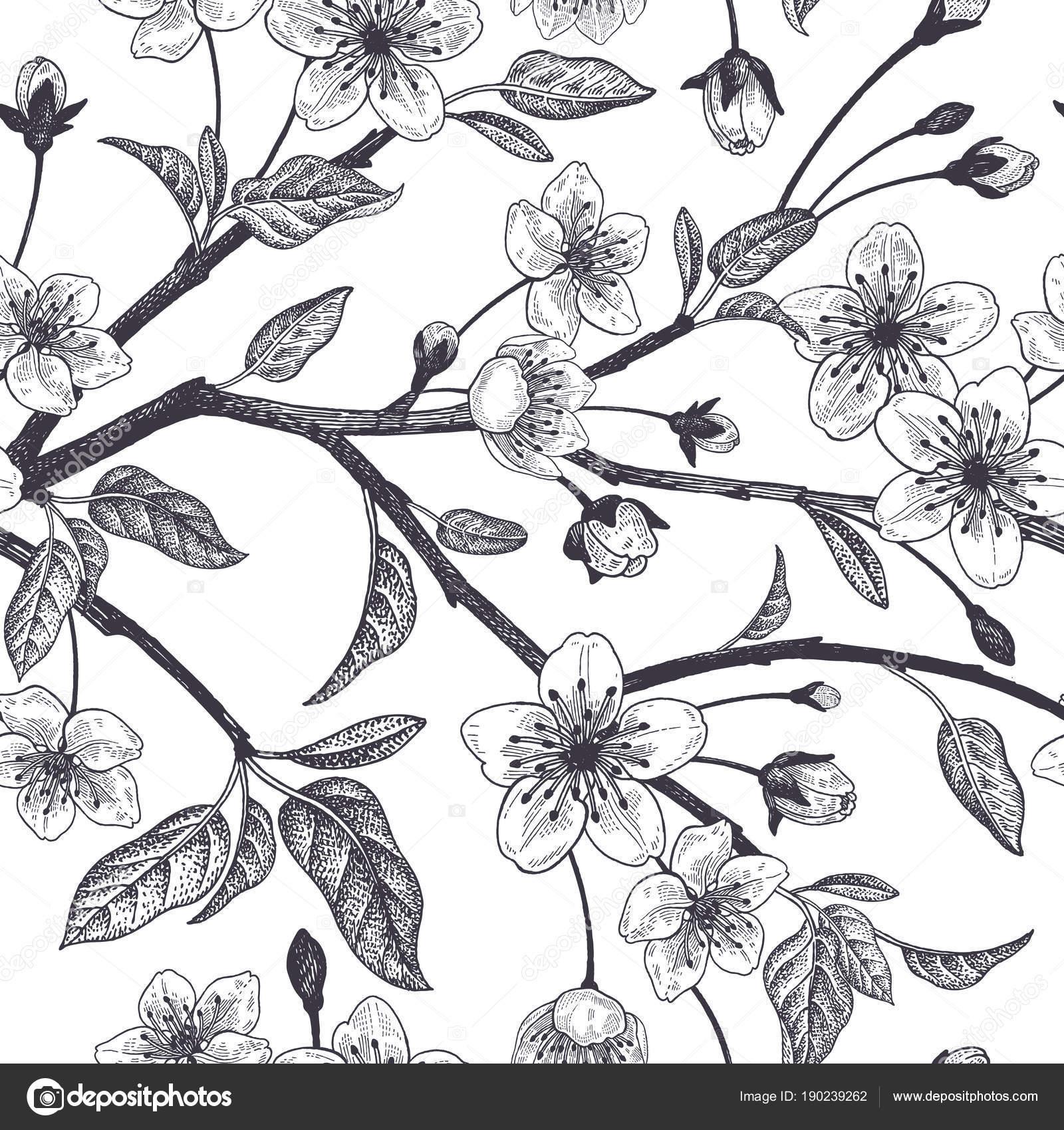 Modèle Sans Couture Vintage Floral Avec Cerisier Japonais