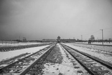 Barbed wire fences in Auschwitz II-Birkenau.