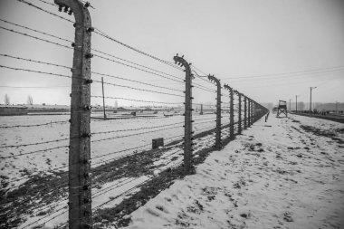 Barbed wire fences in Auschwitz II-Birkenau. The sad history.