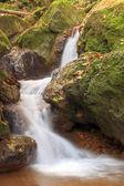 Flusso bianco in rocce verdi