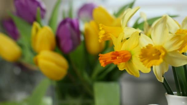 žonkyla a tulipány ve váze