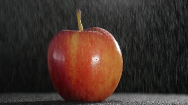 beautiful red apple in rotation with drizzle