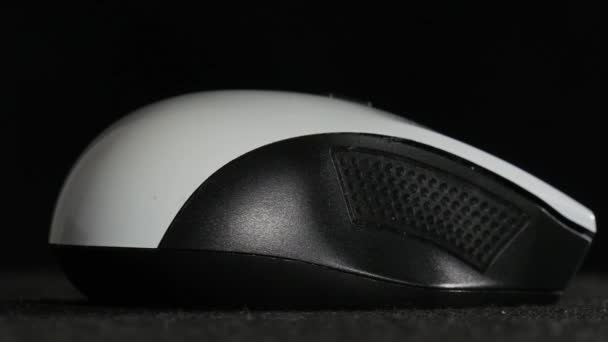 A mouse of computer