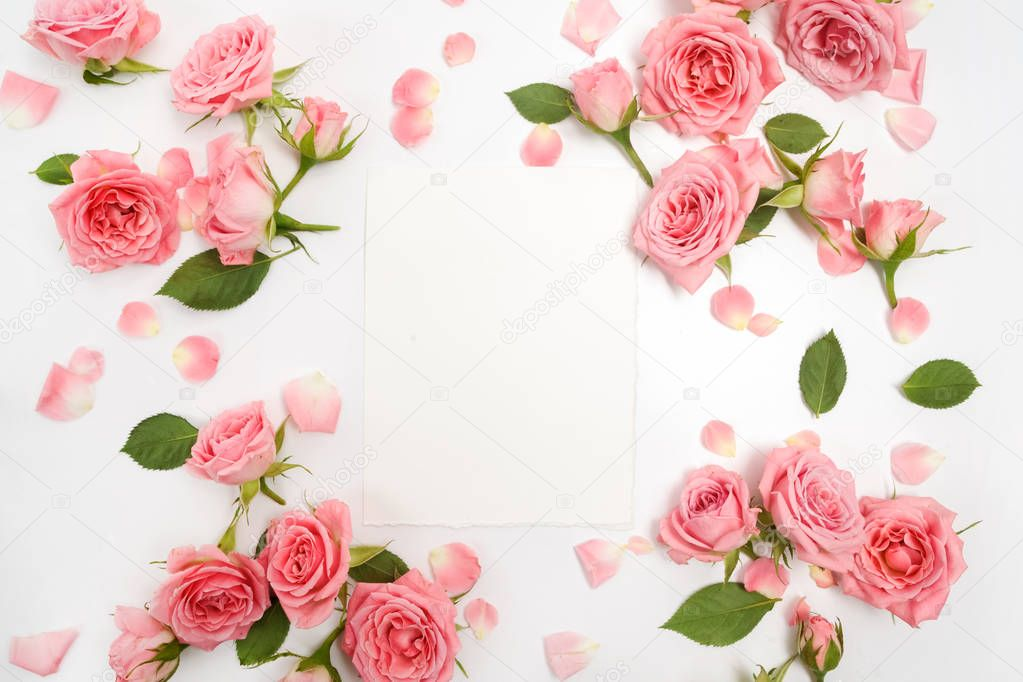 Framework from roses on white background. Flat lay, top view