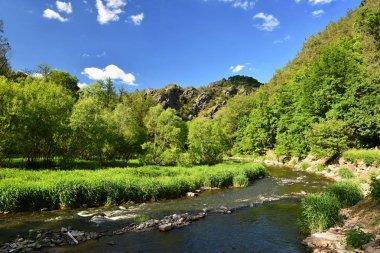 """Картина, постер, плакат, фотообои """"река ослава. красивый пейзаж. природные пейзажи с небом и облаками. чехия, европа . фото"""", артикул 156504554"""