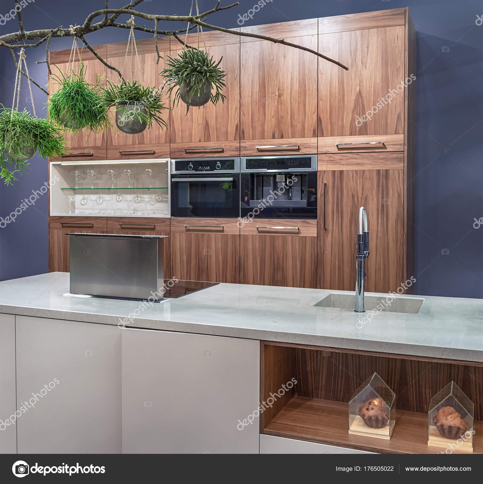 Cozinha Moderna Em Estilo High Tech Com Uma Ilha Built In