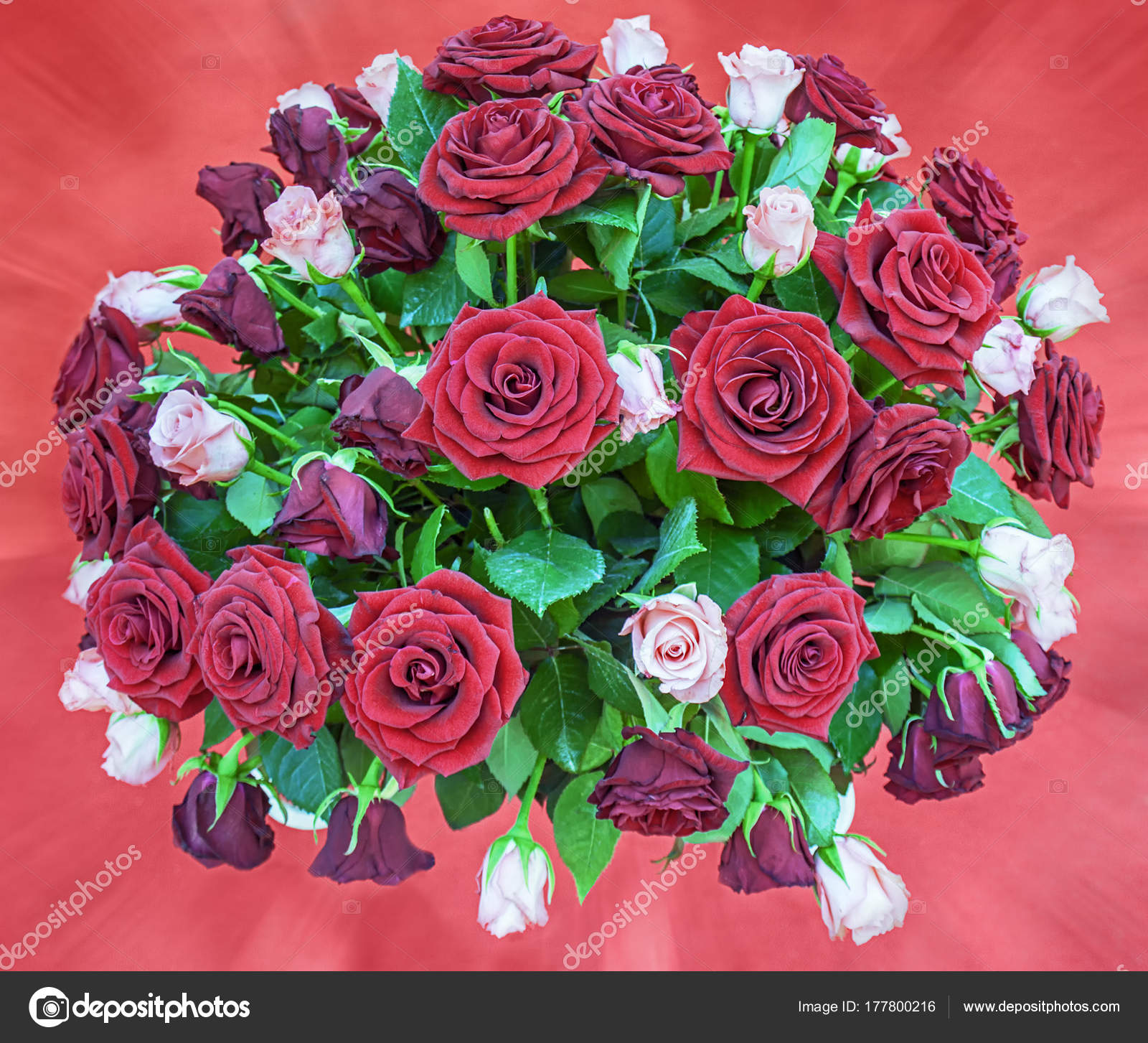 A large bouquet of the red and pink roses — Stock Photo © fotiy ...