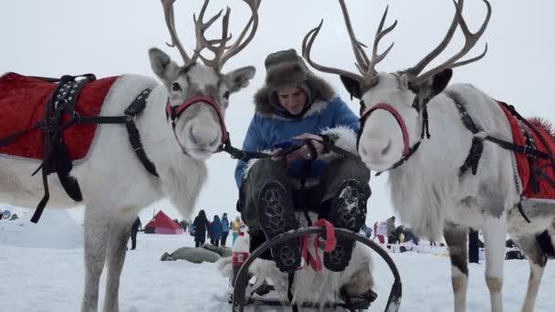 Novoszibirszk, Oroszország / Szibéria, február / 15 / 2020, éves ünnep Eskimo város. A musher (Kayur) ül egy szánkó között két rénszarvas egy gyönyörű hámot, és megnyomja a gombot az okostelefon.