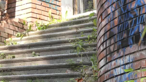 Paranormální místo, paranormální, Mladá žena cyklistka zkoumá staré zničené budovy, nahoru po schodech. Sibiř.