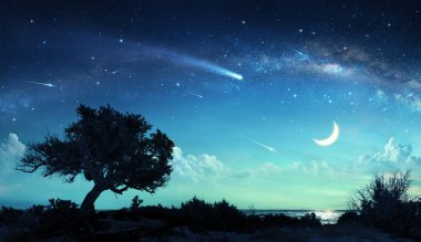 Shooting Stars In Fantasy Landscape At Night