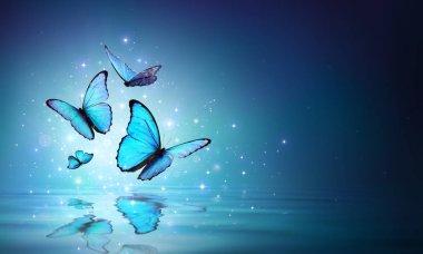 Fairy Blue Butterflies On Water