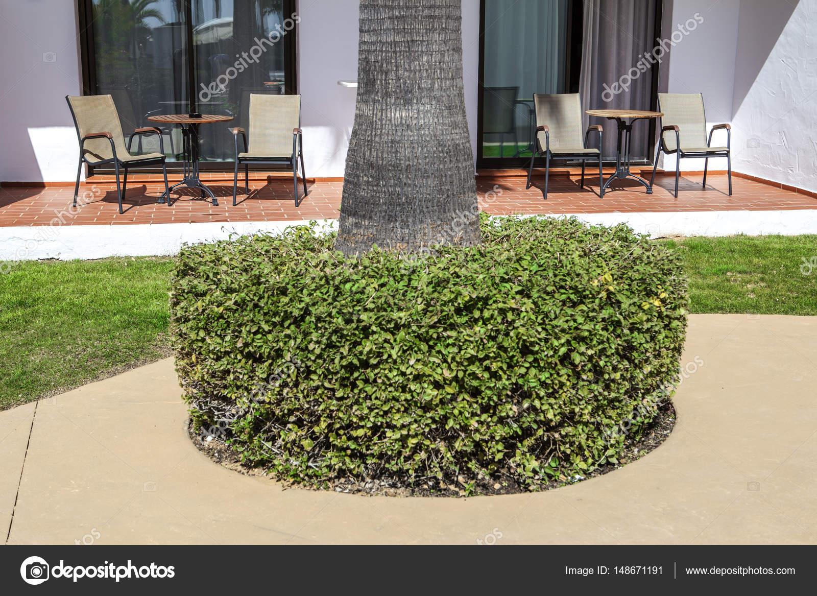 Terrasse Ouverte Sur Jardin Au Complexe D Appartements De Vacances