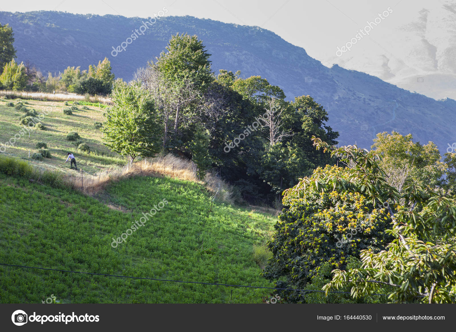 Agricultores De Montaña En Terrazas De Banco Cerca Del