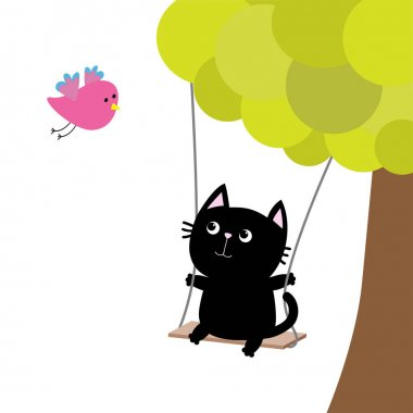 Cat ride on the swing.